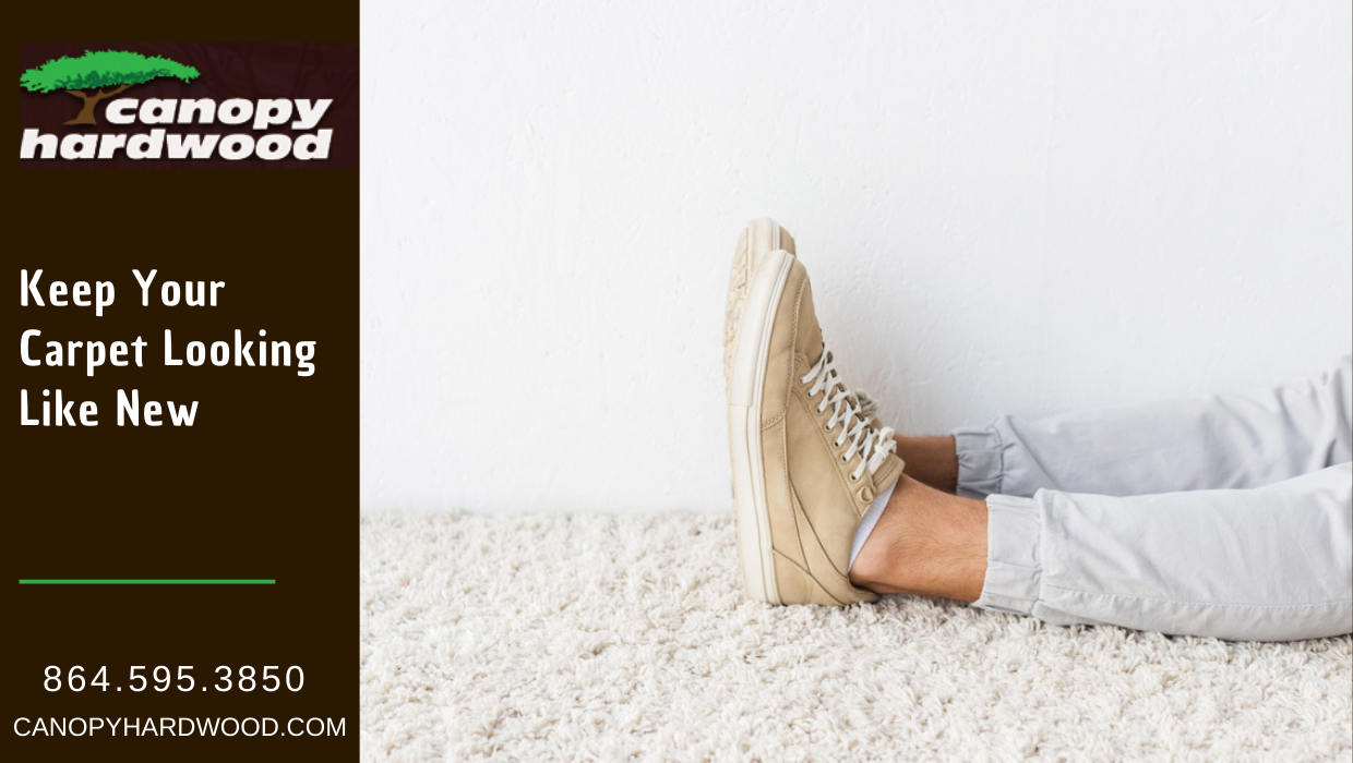 Keep Your Carpet Looking Like New